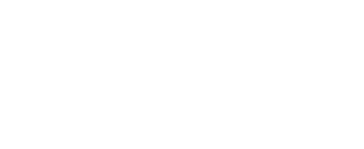 Moon - Mobison - Mobility is On
